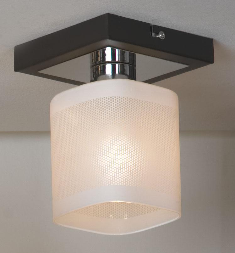 Светильник LussoleСветильники настенно-потолочные<br>Мощность: 40,<br>Количество ламп: 1,<br>Назначение светильника: для комнаты,<br>Стиль светильника: модерн,<br>Тип лампы: накаливания,<br>Длина (мм): 170,<br>Ширина: 100,<br>Патрон: Е14,<br>Цвет арматуры: коричневый<br>