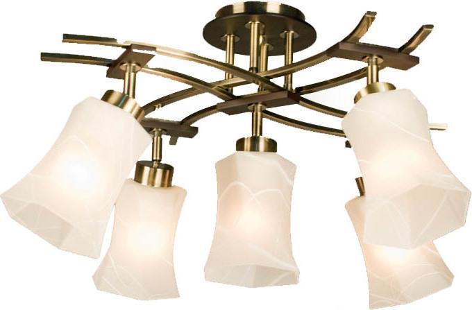 Люстра CitiluxЛюстры<br>Назначение светильника: для комнаты, Стиль светильника: модерн, Материал светильника: металл, стекло, Количество ламп: 5, Тип лампы: накаливания, Мощность: 75, Патрон: Е27, Цвет арматуры: бронза, Родина бренда: Дания<br>
