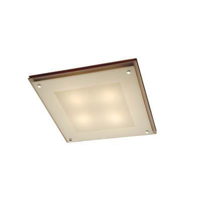 Светильник настенно-потолочный Citilux Cl938541
