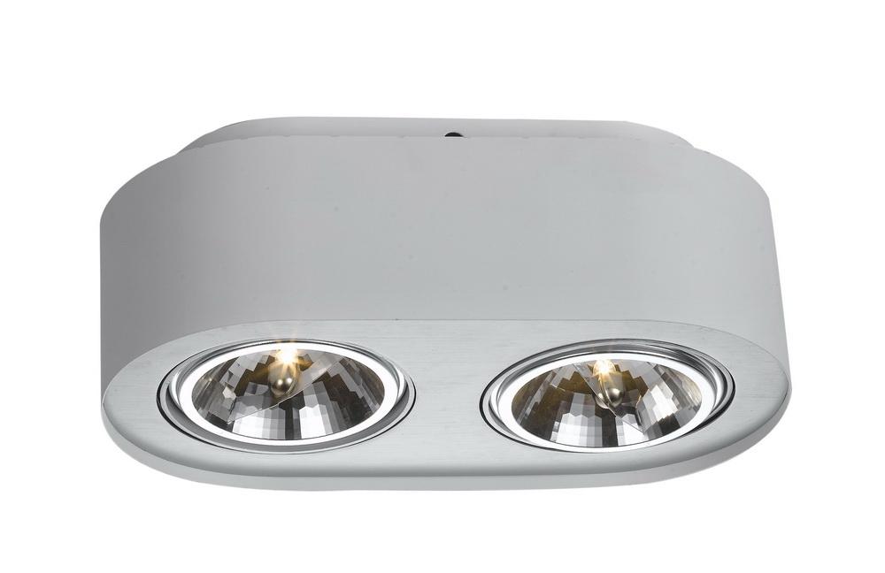 Светильник встраиваемый Arte lampСветильники встраиваемые<br>Стиль светильника: хай-тек, Форма светильника: круг, Материал светильника: металл, Количество ламп: 2, Тип лампы: галогенная, Мощность: 50, Патрон: G53, Цвет арматуры: белый, Коллекция: cliff 5643<br>