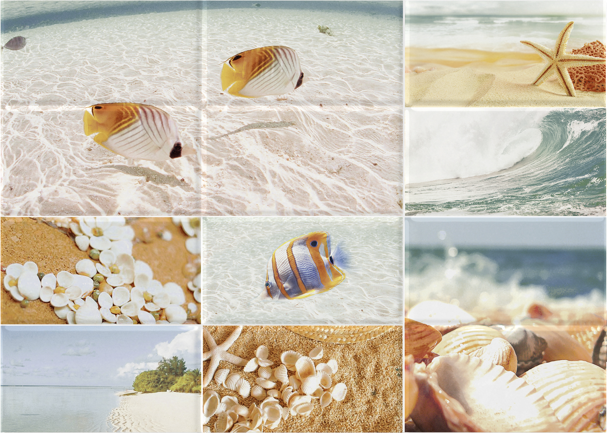 Декор керамический Rovese (cersanit)Керамическая плитка<br>Коллекция: Ocean,<br>Тип: декор,<br>Место укладки: стены,<br>Назначение плитки: для ванной комнаты, туалета,<br>Рисунок: флора,<br>Цвет: бежевый,<br>Поверхность: рельефная, глянцевая,<br>Размер плитки: 250х350,<br>Толщина: 7,<br>Страна происхождения: Россия,<br>Количество в упаковке: 15<br>