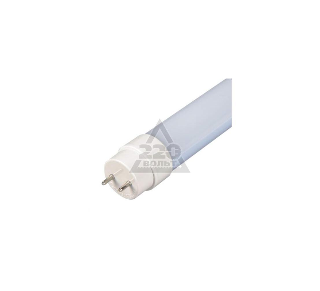 Лампа светодиодная JAZZWAY PLED-T8-1200GL