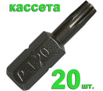 Бита ПРАКТИКА 036-667 T20 25мм, Профи, 20шт.