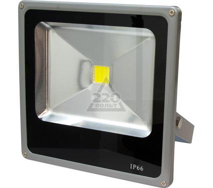 Светодиодный прожектор FERON LL-272