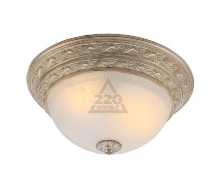 Светильник настенно-потолочный ARTE LAMP A8013PL-2WA