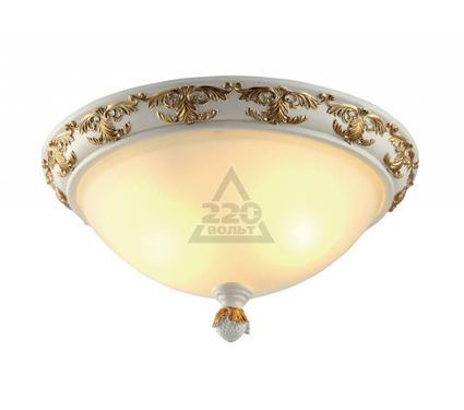 Светильник настенно-потолочный ARTE LAMP A9570PL-2WG