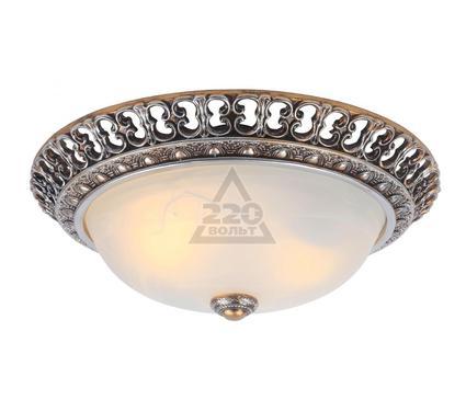 Светильник настенно-потолочный ARTE LAMP A7132PL-2SA