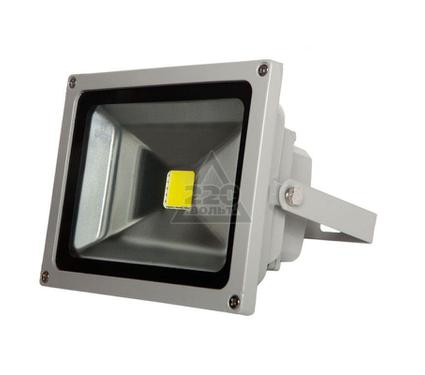 Прожектор светодиодный ЭКОРОСТ 515-020