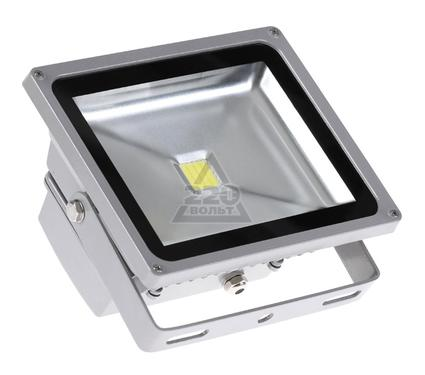 Прожектор JAZZWAY PFL-50W/CW/GR