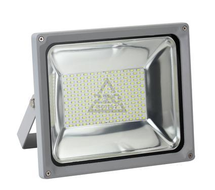 Прожектор светодиодный JAZZWAY PFL-SMD-100w/CW/GR