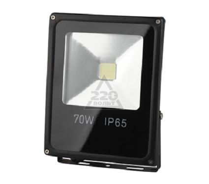 Прожектор светодиодный ЭРА LPR-70-6500К-М