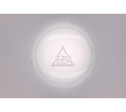 Светильник настенно-потолочный CITILUX CL917081