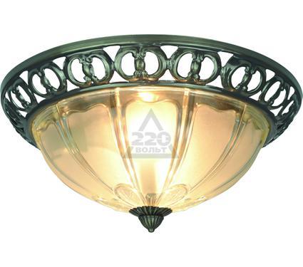 Светильник настенно-потолочный ARTE LAMP A1306PL-2AB