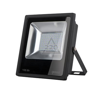 Прожектор GAUSS 613100100