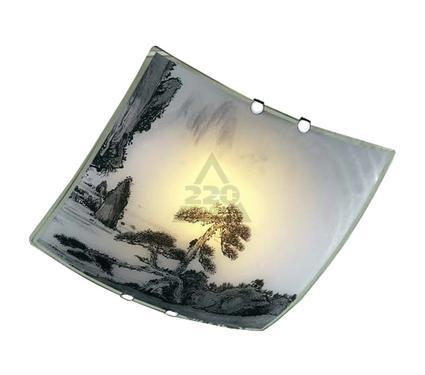 Светильник настенно-потолочный BLITZ 2504-21