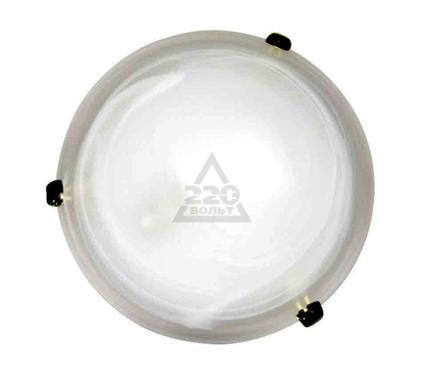 Светильник настенно-потолочный ARTE LAMP LUNA A3440PL-2GO