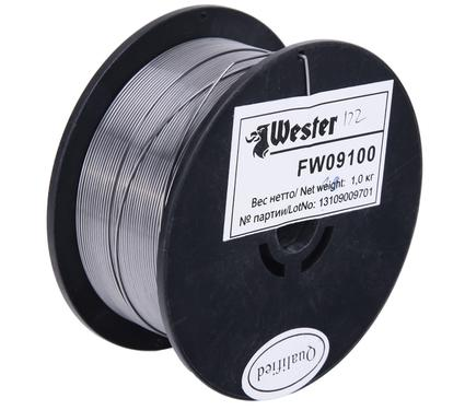 ��������� ��������� WESTER FW09100